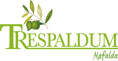 Logo trespaldum